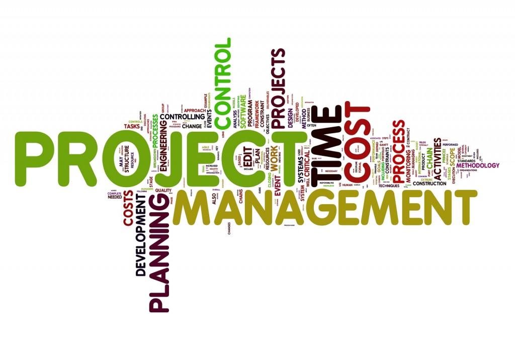 cursuri manager proiect cluj